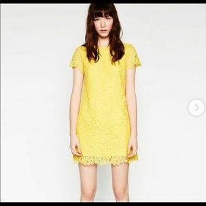 Zara yellow lace dress small